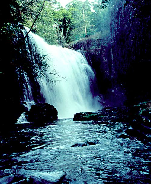 http://www.betterlivingthroughbeowulf.com/wp-content/uploads/2010/06/waterfall.jpg