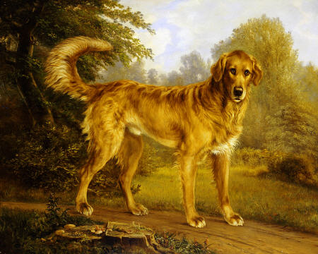 "Niels Aagaard Lytzen, ""Golden Retriever on a Path"""